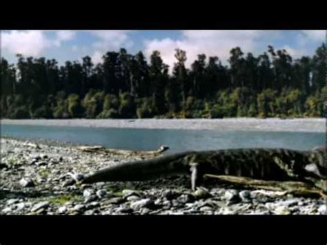 Giant crocodiles - Walking with Dinosaurs in HQ - BBC